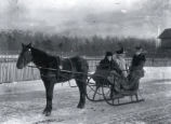 (01 10 001) Transport, St. John's. People in horse drawn sleigh,  Government House grounds ca. 1890