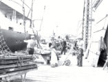 03.02.009: Waterfront, St. John's. Men unloading cargo on the Southside wharf, post-1892