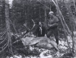 25.02.003: Caribou. Two men standing by a dead caribou, possibly near the Newfoundland railway,...