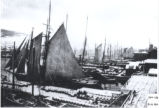 (31 02 034) Ships. Schooners by the wharves on the north side of St. John's Harbour