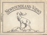 "Views in Newfoundland, ""England's oldest colony"" : showing some of its magnificent..."