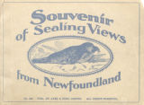 Souvenir of sealing views from Newfoundland