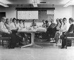 036 Sixty-fifth meeting of the Planning and Development Committee held on August 25, 1972 in St....
