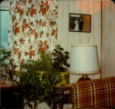 View of living room of Dan O'Quinn's Home showing part of the window, the couch, a house plant,...
