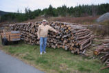 Lloyd Smith with firewood pile, Heart's Content.