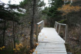Bridge along Mizzen Pond trail, Heart's Content.