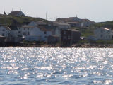 View from the water, houses, Joe Batt's Arm