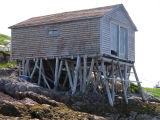 Fishing store at low tide, Little Fogo Island
