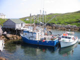 Boats and stages, Little Fogo Island