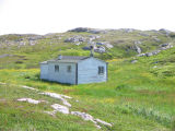 Cabin in a marsh, Little Fogo Island