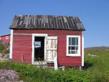 Peter Emberley's shed, Little Fogo Island