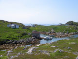 Wadham's Harbour, Little Fogo Island