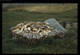 Dan Greene's wood pile, Tilting