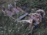 Photo of discarded squid trawl