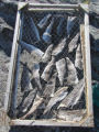 Salt cod drying on a wire mesh flake, Keels