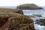 View of Bird Island Cove or the puffin site in Elliston, NL.