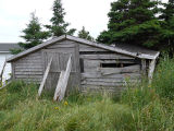 Bryant's Cove 5 root cellar.  Bryant's Cove, Newfoundland.