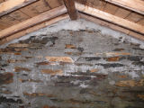 French's Cove 6 root cellar, interior, Bay Roberts
