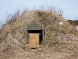 Upper Jenkins' Cove Root Cellar 9, Twillingate, Newfoundland