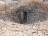 Upper Jenkins' Cove Root Cellar 20, Twillingate, Newfoundland
