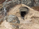 Upper Jenkins' Cove Root Cellar 4, Twillingate, Newfoundland