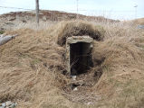 South Side Root Cellar 12, Twillingate, Newfoundland
