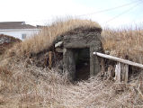 Upper Jenkins' Cove Root Cellar 2, Twillingate, Newfoundland