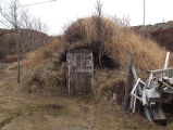 Durrell Root Cellar 3, Twillingate, Newfoundland