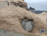 Crow Head Root Cellar 5 Twillingate, Newfoundland
