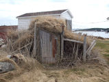 Kettle Cove South Root Cellar 1 Twillingate, Newfoundland