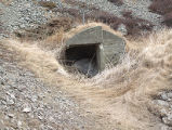 South Side Root Cellar 20, Twillingate, Newfoundland