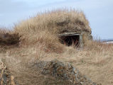 North Side Root Cellar 21, Twillingate, Newfoundland