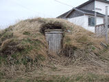 South Side Root Cellar 22, Twillingate, Newfoundland