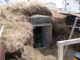 Upper Jenkins' Cove Root Cellar 30, Twillingate, Newfoundland