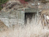 Back Harbour Root Cellar 1 Twillingate, Newfoundland