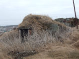 North Side Root Cellar 12, Twillingate, Newfoundland