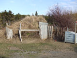 Bluff Head Cove Root Cellar 1 Twillingate, Newfoundland