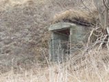 North Side Root Cellar 19, Twillingate, Newfoundland