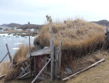 Upper Jenkins' Cove Root Cellar 29, Twillingate, Newfoundland