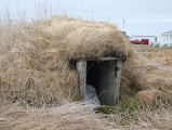 North Side Root Cellar 14, Twillingate, Newfoundland