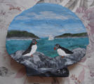 Pilgrim, Ruth.  A puffin scene shell painting made by Ruth Pilgrim, St. Anthony Bight.