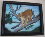 Pilgrim, Ruth.  A wildcat scene painted by Ruth Pilgrim, St. Anthony Bight.