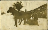 Roberts family with horse. Black and white photograph.