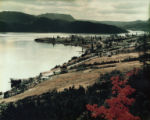 View of Woody Point 1. Colour photograph.