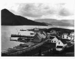 View of Norris Point 1. Black and white photograph.