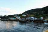 Stages in Woody Point