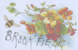 (003.01.034) Postcard, Brookfield