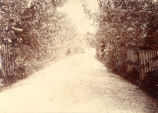 ''Entrance to ''Sydney'', near St. John's, 1902.''