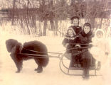 Four children on a sleigh towed by a Newfoundland dog.