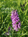 The Osprey, vol. 39, no. 03 (August 2008)